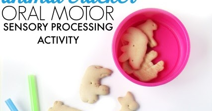 Animal Cracker Oral Motor Exercise With Shape