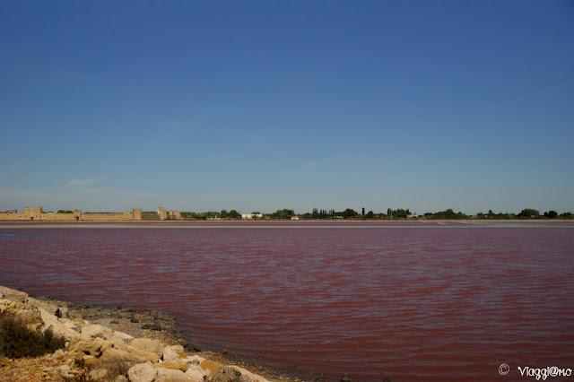 Il rosa acceso nelle saline di Aigues Mortes