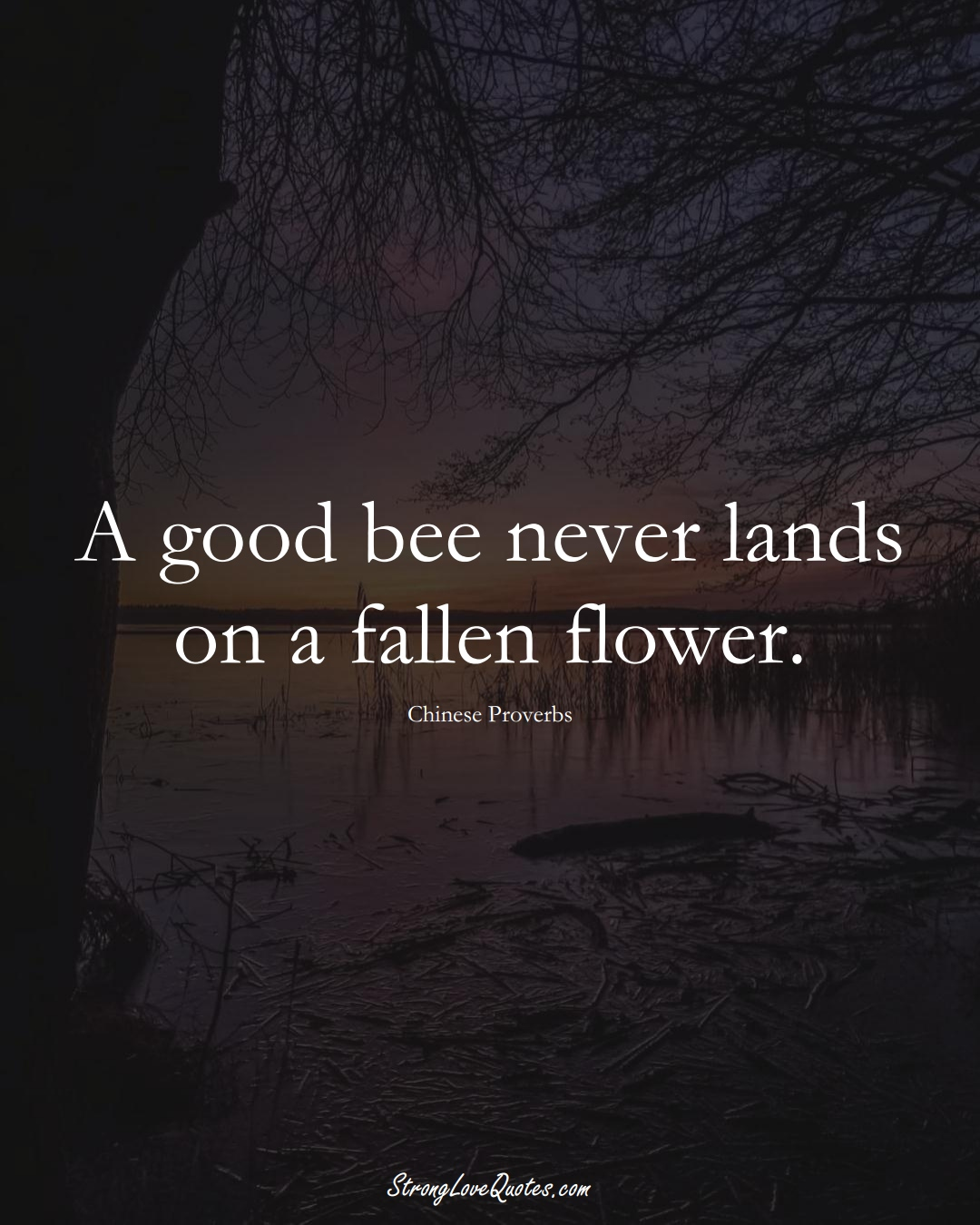 A good bee never lands on a fallen flower. (Chinese Sayings);  #AsianSayings