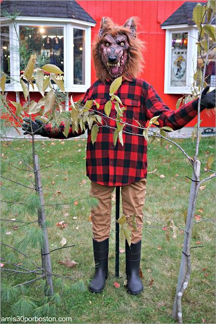 Camping en el Return of the Pumpkin People de Jackson en New Hampshire