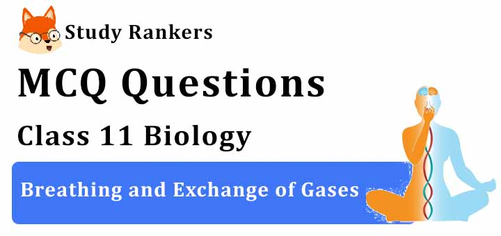 MCQ Questions for Class 11 Biology: Ch 17 Breathing and Exchange of Gases