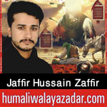 https://aliwalayazadar.blogspot.com/2020/08/syed-jaffir-hussain-zaffir-naqvi-nohay.html