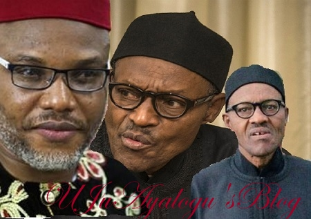 REAL SICK Buhari Still In UK, The Man In Aso Rock Now Is A Hired Sudanese Who Underwent Surgery To Look Like The President - Nnamdi Kanu Stirs Fresh Controversy