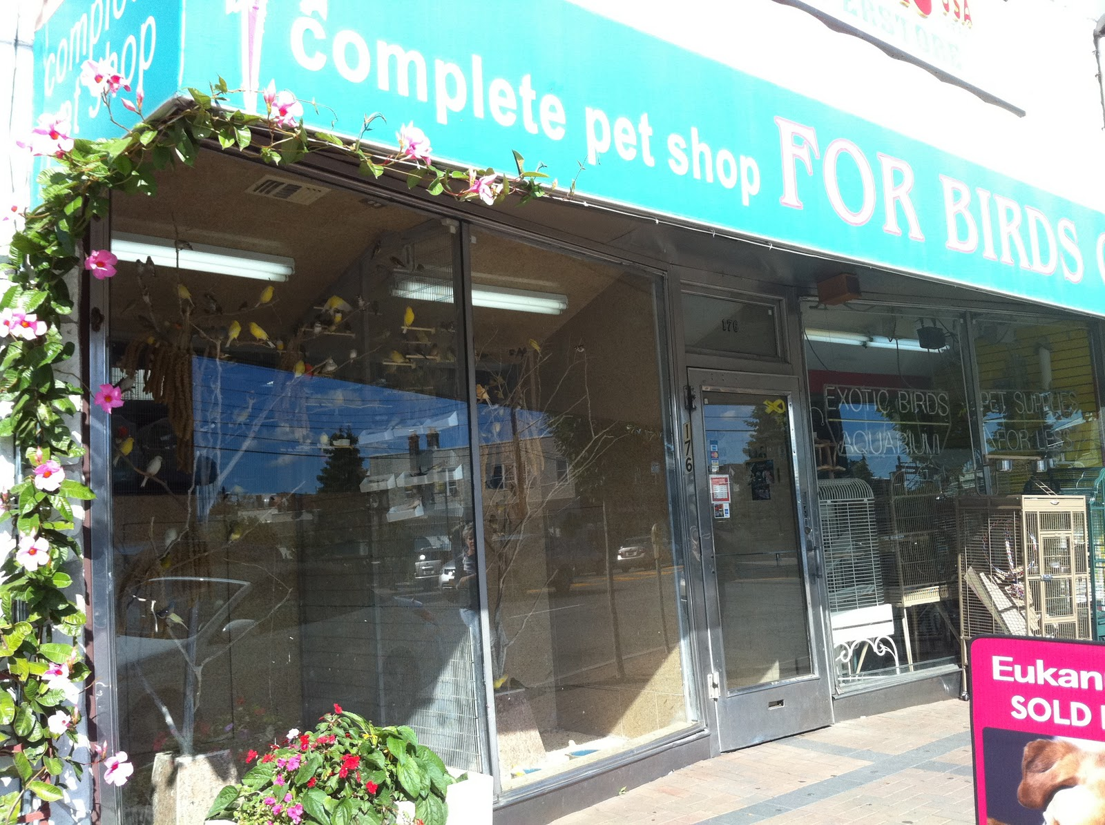 Shops Discovered: For Birds Only - Mineola