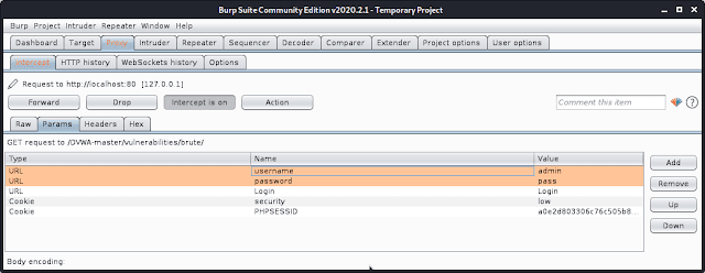 Burp suite request parameters