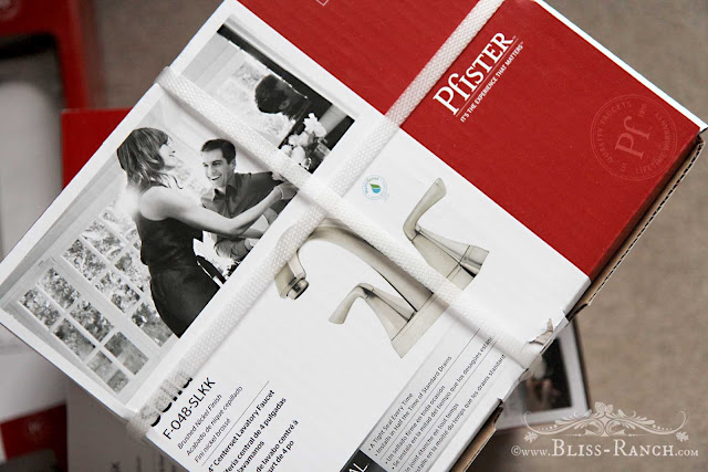 New Pfister Faucet for Jack & Jill Bathroom Redo Bliss-Ranch.com