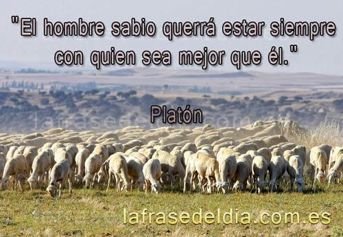 Frases famosas de Platón