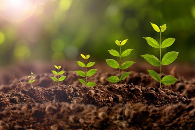 وسائل و تدابير حماية التربة