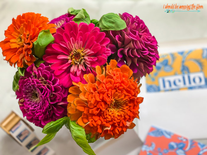 Zinnias from Seed