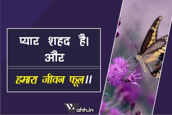 Pyaar-Shahad-Hai-Love-Quotes-In-Hindi