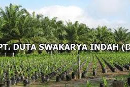 Lowongan Kerja PT. Duta Swakarya Indah Pekanbaru Agustus 2019