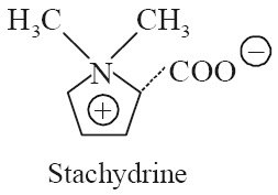 Stachydrine Synonyms Methyl hygrate betaine; Hygric acid methylbetaine