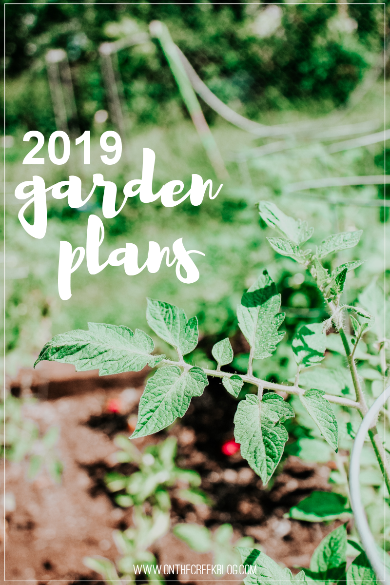 Plans for my 2019 garden!