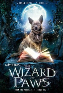 The Amazing Wizard of Paws In Romana Subtitrat Film
