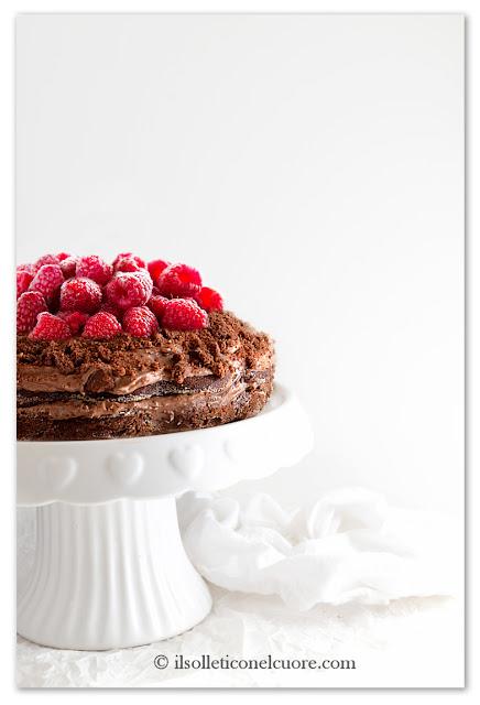 torta-al-cioccolato-senza-glutine-cameo-preparato