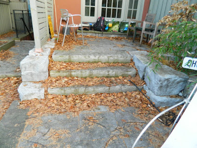 Cabbagetown Toronto Backyard Fall Cleanup Before by Paul Jung Gardening Services--a Toronto Organic Gardening Company