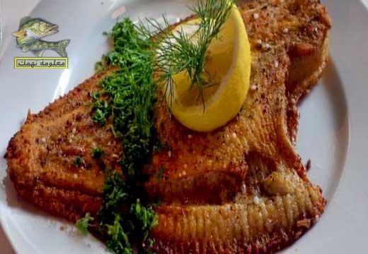 فوائد سمكة موسي
