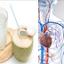 Things Will Happen To Your Body When You Drink Coconut Water For 14 Days!