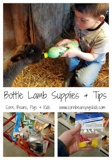 Bottle Lamb Supplies and Tips #SpringatTheisens #sponsored
