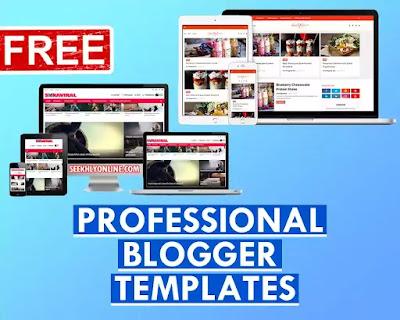 Professional Blogger Templates Free - seekhlyonline.com