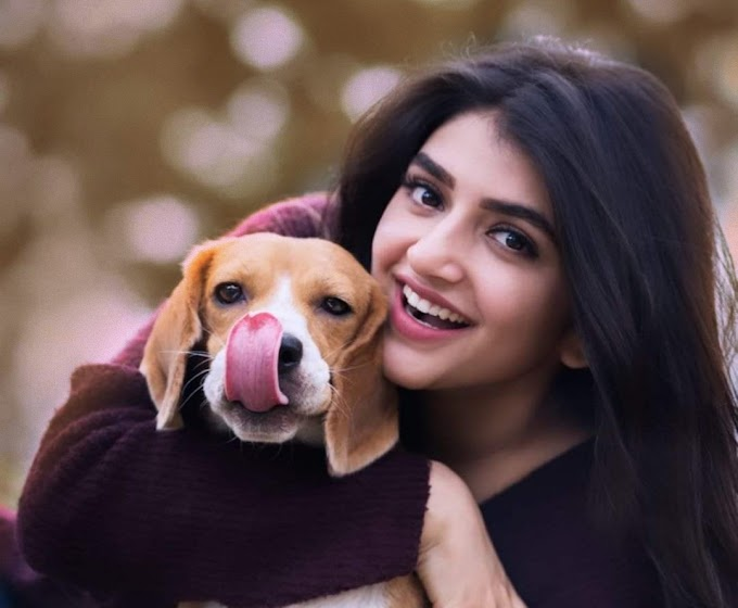 sreeleela - age , boyfriend , wiki , family , networth , images & facts about actress sreeleela