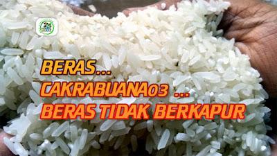 Beras Padi CAKRABUANA 03 (CB03)    Beras Putih Bening, Tidak Berkapur.   Rasa Nasi Super Pulen