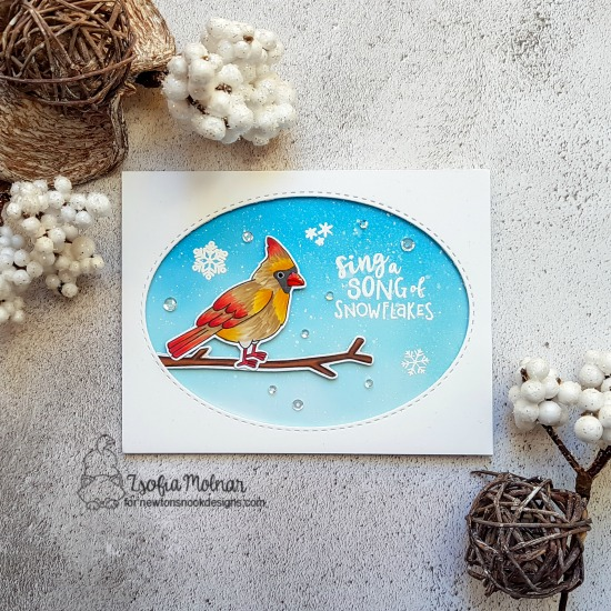 Cardinal Winter Bird Card by Zsofia Molnar | Winter Birds Stamp Set by Newton's Nook Designs #newtonsnook #handmade