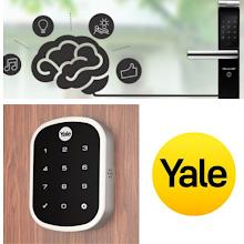 Yale - La Fonte