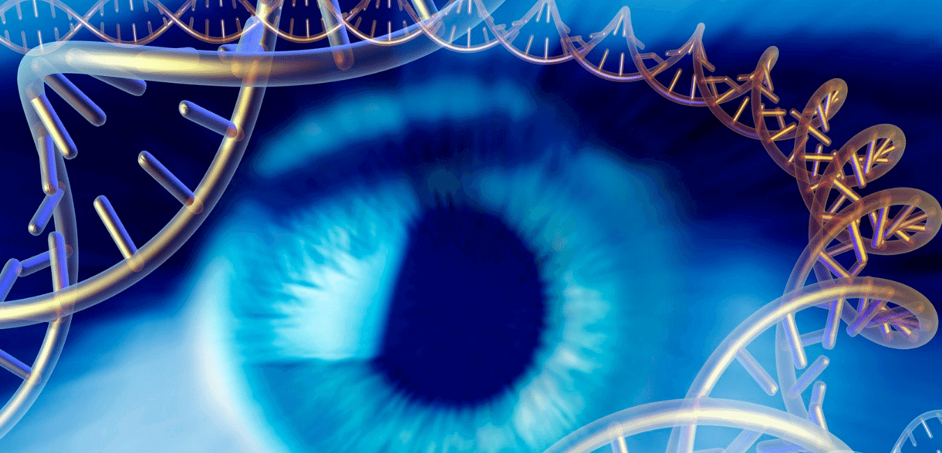 Gene Therapy and the EYe