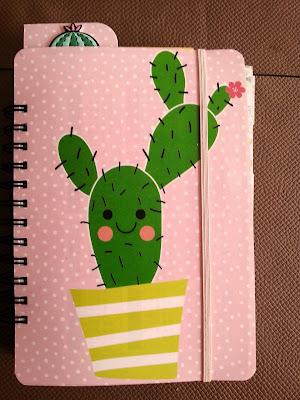 Cactus, Binden, Cinch
