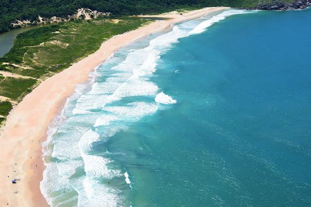 paisagem de mar azul com vegetação nativa