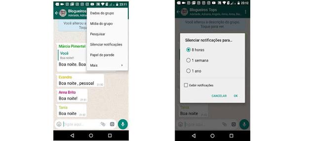 Silenciar notificações Whatsapp