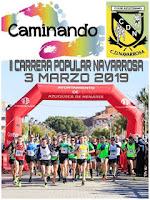 https://calendariocarrerascavillanueva.blogspot.com/2018/12/ii-carrera-de-la-navarrosa.html