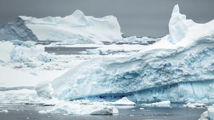 Hemzseg az állatoktól az Antarktiszról leszakadt A74 jéghegy környezete - videó