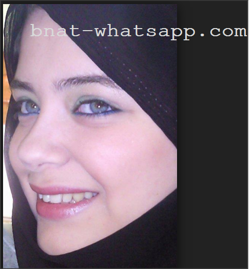 Recherche femme sur whatsapp