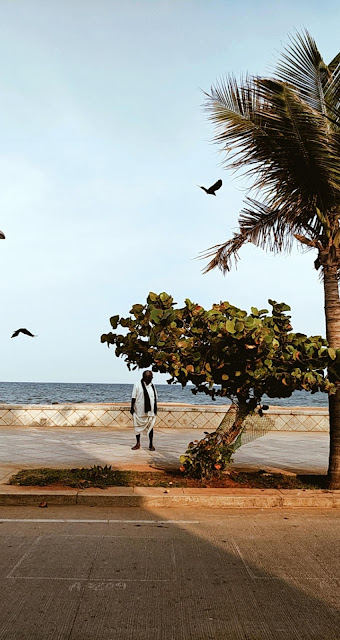 Pondicherry-travel-weekend-getaway-style prism-blog-street photography-sea-promenade-trees