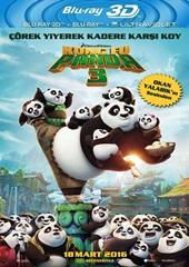 Kung Fu Panda 3 (2016) 3D Film indir