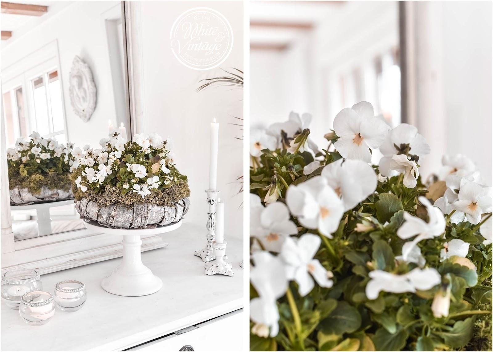 Kranz aus Baumrinden mit weißen Hornveilchen dekorieren.