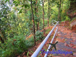 Bandipur Trip Guide, Bandipur, travelwithsagun, Bandipur hotels