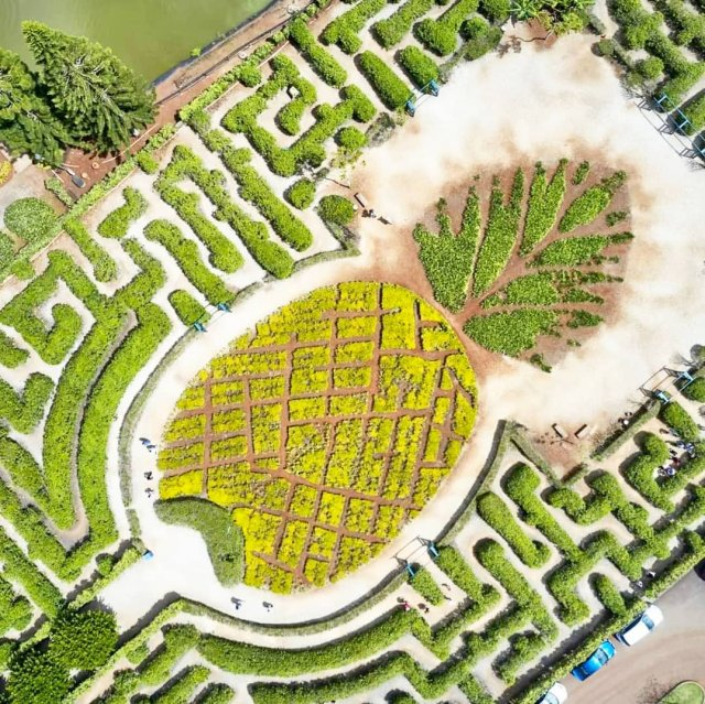 Hawaii (Wahiawa): The largest labyrinth in the world - more than a hectare.