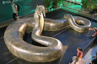 Titanoboa, la serpiente más grande de la historia