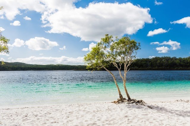 10 Aesthetic Australia Facts You Need To Know About This Embracing Beauty Island