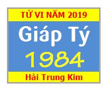 Tử Vi Tuổi Giáp Tý 1984 Năm 2019