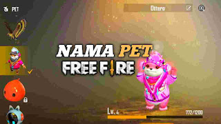 Nama pet ff