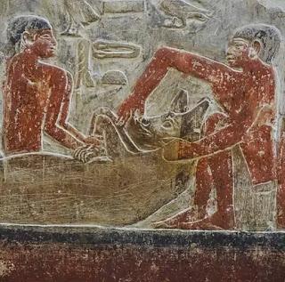Tomb of Mereruka