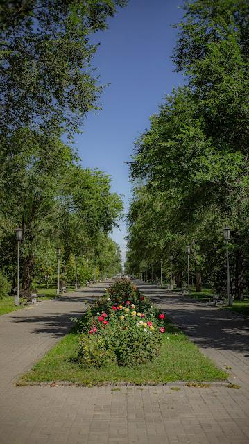 Волгоград бульвар парк розы лето