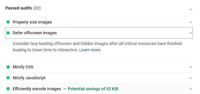 Lazy load audit passed on page speed insight