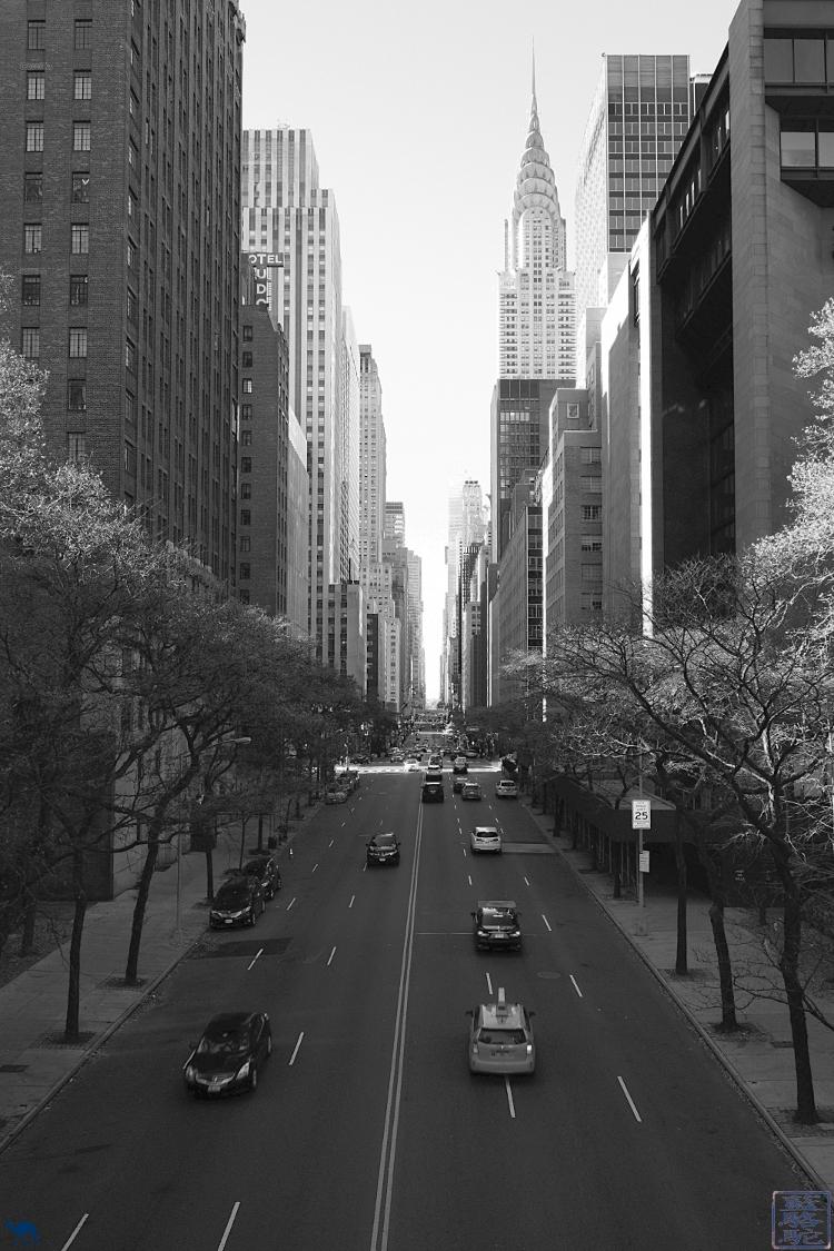 Le Chameau Bleu - Manhattan et le Chrysler Building New York