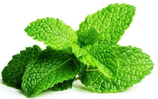 Peppermint Ginger Plus mengandungi daun pudina yang membantu atasi masalah Gastrik ketika berpuasa