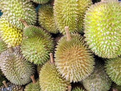 Manfaat Dan Khasiat Buah Durian Bagi Kesehatan